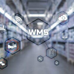 Jak system magazynowy WMS wspiera pracę magazynów i działów logistycznych?